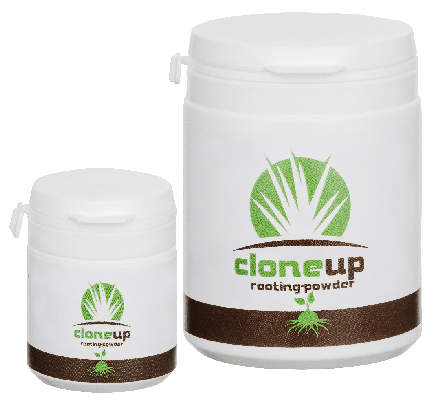 cloneup rooting powder