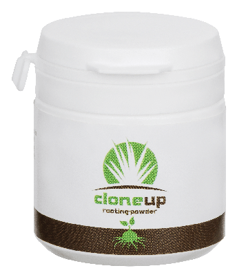 cloneup rooting powder - 22g